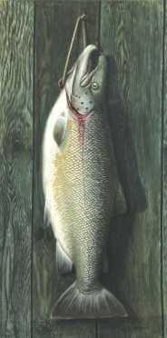 Sid Bickford,  watercolor on artists paper board of a large lake trout