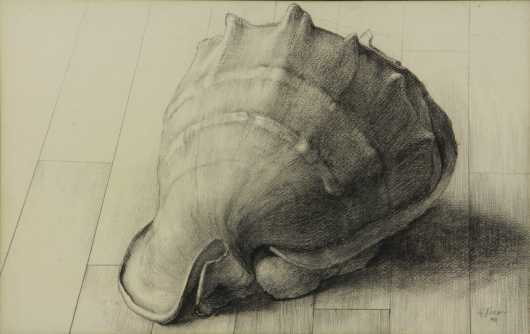 Frederick Rhodes Sisson, drawing of a seashell