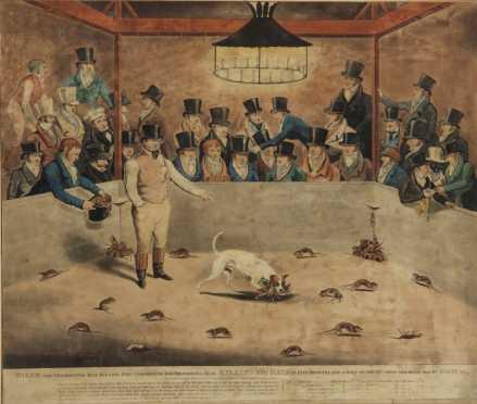 Billy The Celebrated Rat Killing Dog, hand colored aqua tint