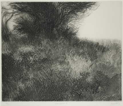 "Peter Winslow Milton, etching ""Summer Landscape III"" with Catalog Raisonne'."