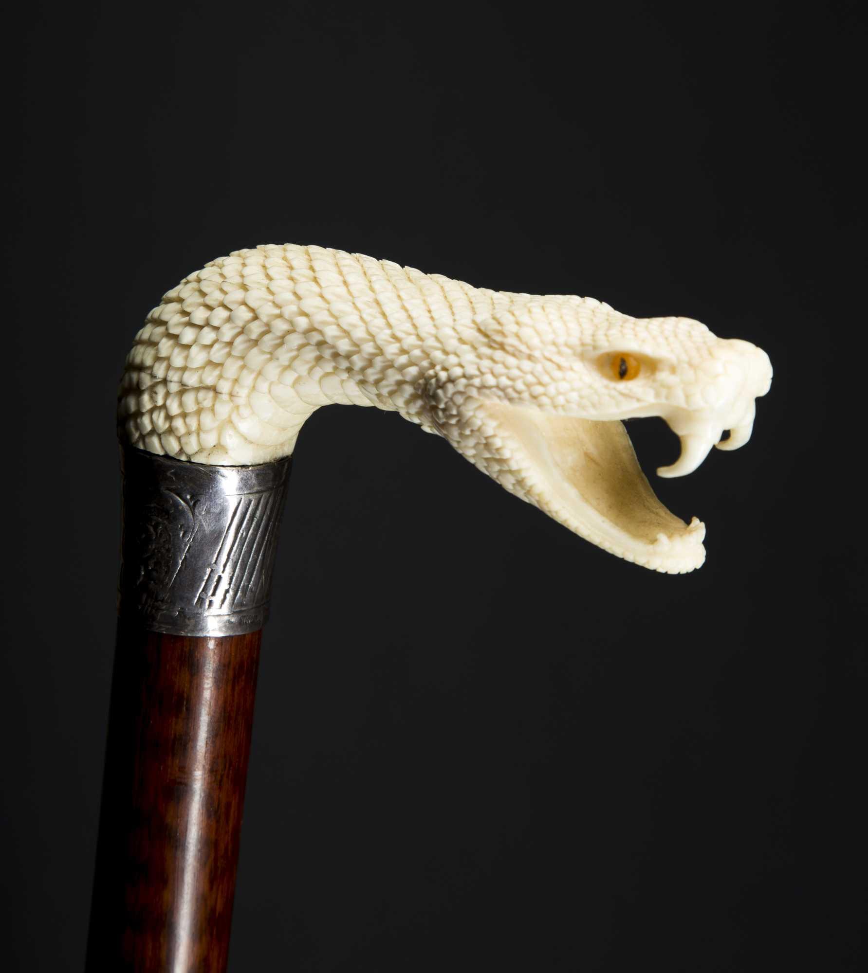 Carved snake head cane
