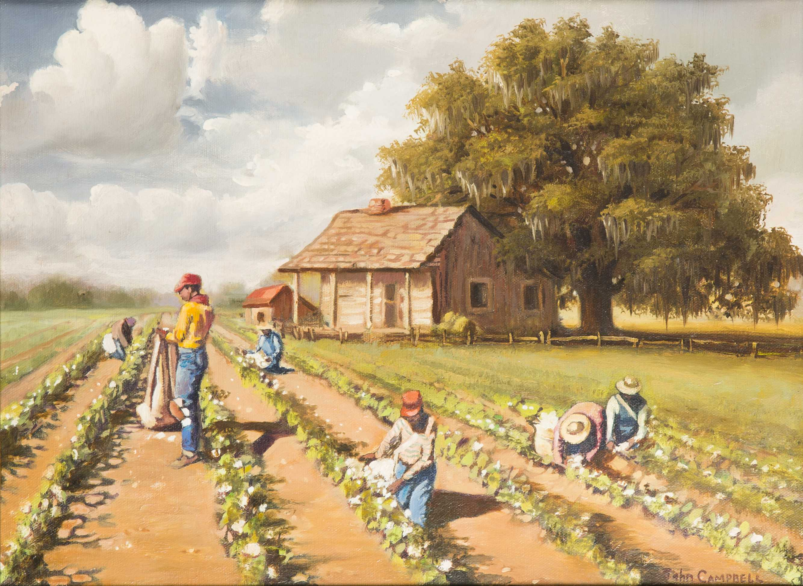 rape redemption injustice and mercy in picking cotton a book by jennifer thompson cannino and ronald