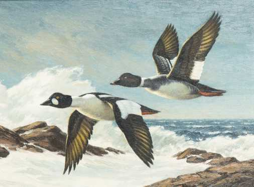 """Daniel Loge, (1954-  )NY, Colorado, attributed, Oil on Board Painting of """"Golden Eyes in Flight"""""""