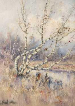 J.Huliata, ? 20thC., Oil on Artist Board of a birch tree by a pond