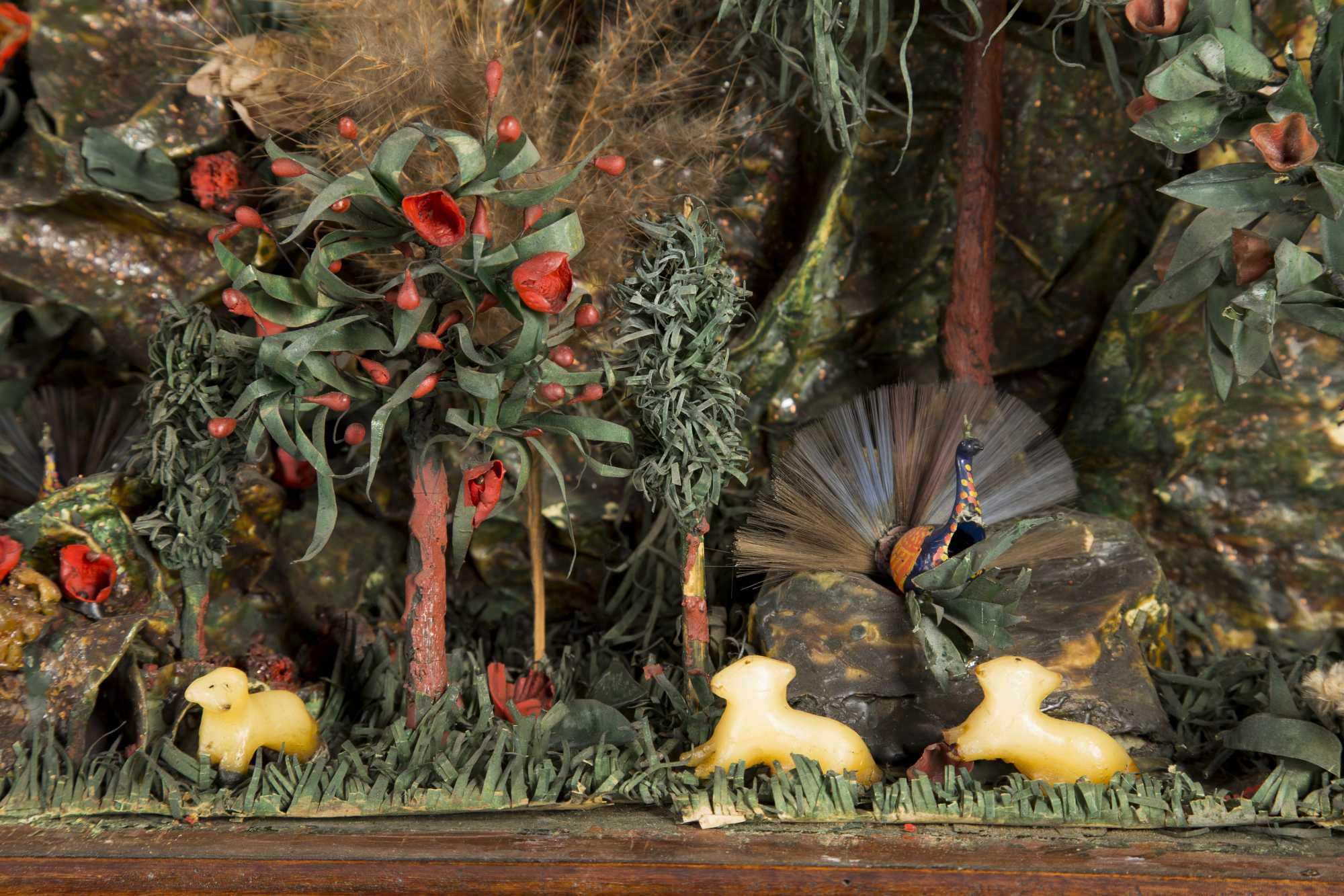 Diorama-An Exotic Garden of Paradise
