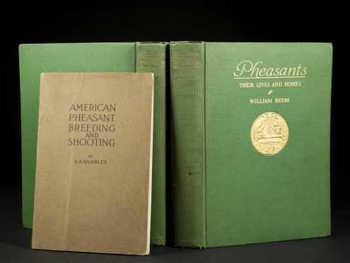 """Beebee Pheasants Quarles """"American Pheasant Shootings"""""""