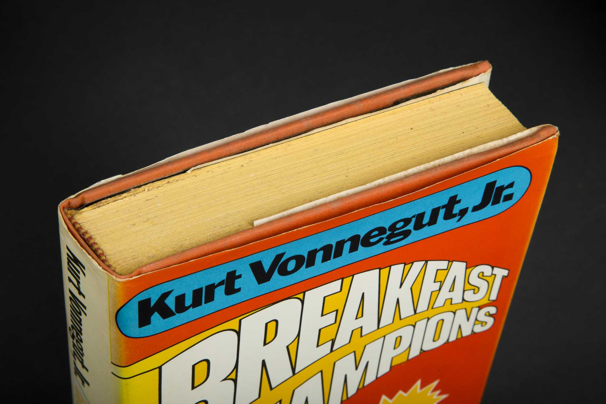 vonnegut breakfast of champions pdf