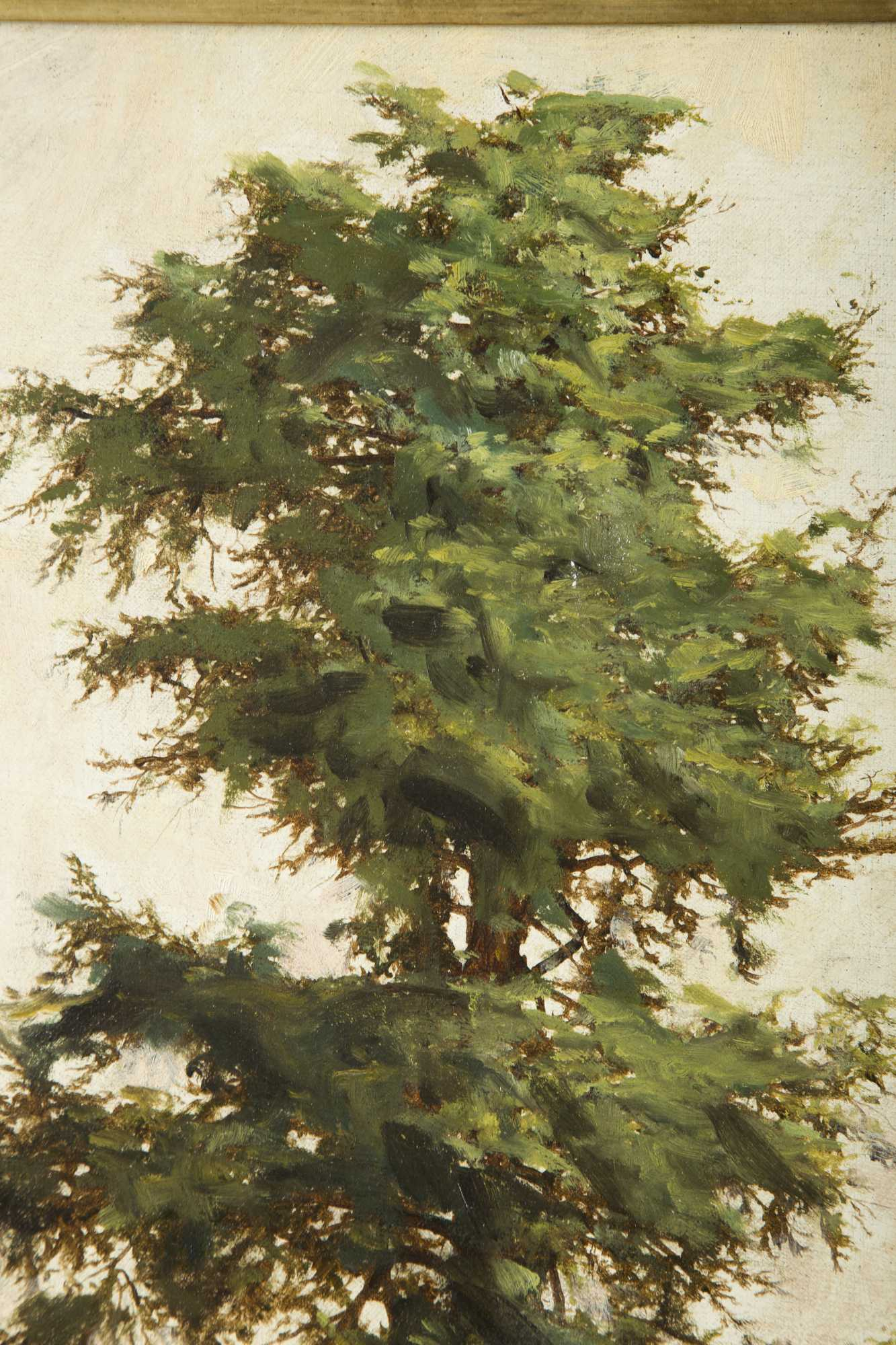 Landscape Painting Of Pine Tree