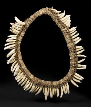 A New Guinea Highlands Pig S Tooth Necklace