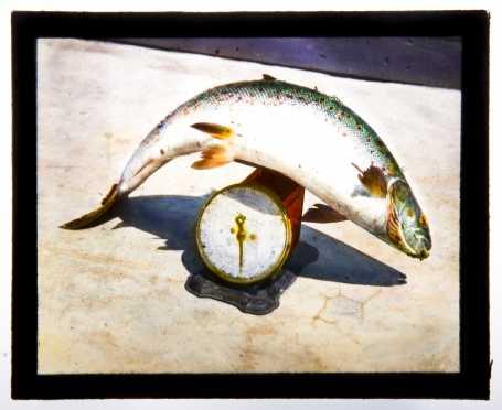 Magic Lantern Glass Slide Collection--Fishing/Maritime