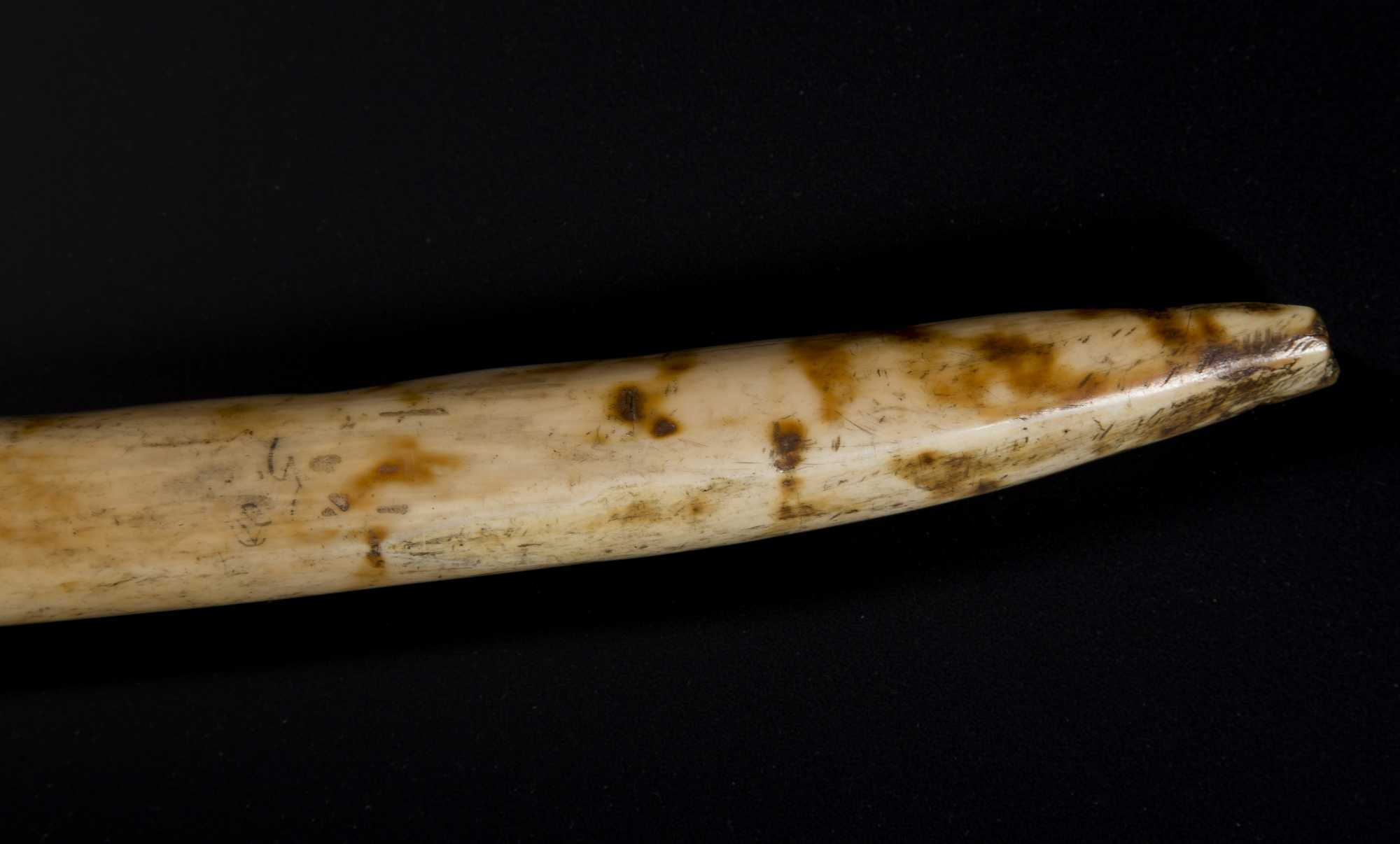 Inuit Carved Walrus Ivory Ice Pick
