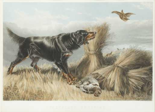 """""""Partridge Shooting"""" Colored Print After Richard Ansdell"""