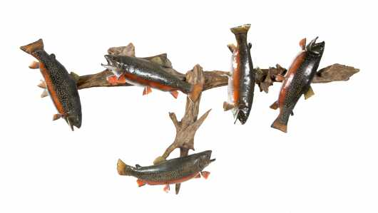 Five Rainbow Trout Mounted