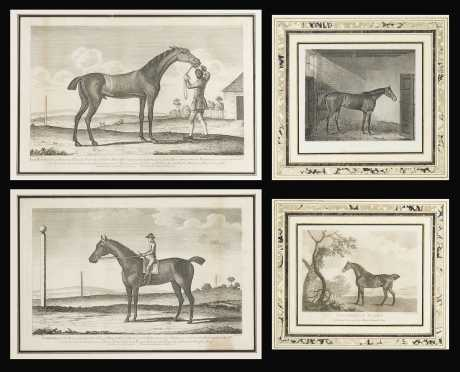 Two pair of English Race Horse Prints