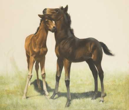Pastel on Paper of 2 Young Horses