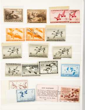 Duck Hunting Stamps