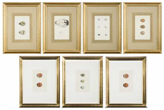 Hewitson's British Birds' Eggs - 6 Framed Prints