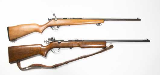 Lot of Two 22 Cal. Rifles
