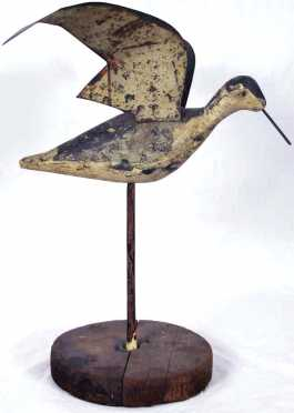 Rare oversized working shore bird with splayed tin wings