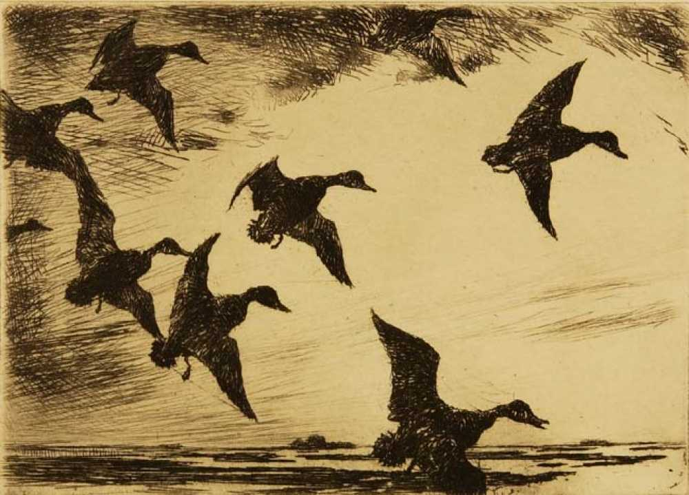 Frank Weston Benson Etching Quot Black Ducks At Dusk Quot