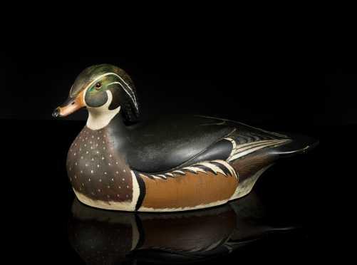 Wood Duck Drake By Bill Joeckel Of Islip, New York