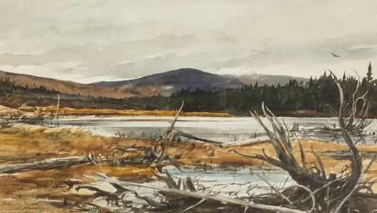 John Swan, Maine (born 1948)