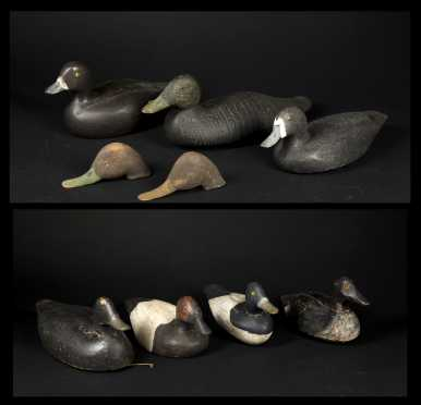 Seven Duck Decoys