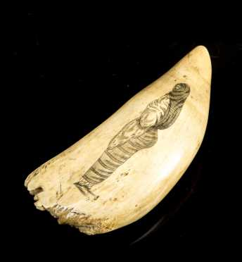 E19thC Peruvian Decorated Whale's Tooth *AVAILABLE FOR $750*