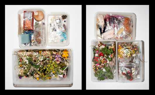 Six Plastic Boxes of Flowers