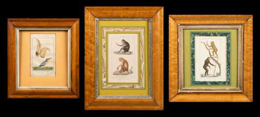 Three Maple Frames with Prints