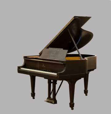 "Steinway and Sons Model ""M"" Grand Piano C1918"
