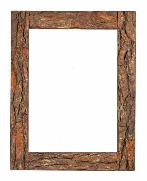 20thC Rustic Bark Frame