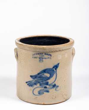Ottman Bros Co, Fort Edward, NY Three Gallon Bird Decorated Crock
